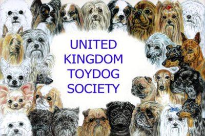 United Kingdom Toy Dog Society