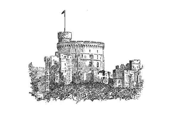 Windsor graphic